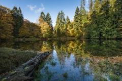 Grafschafter-Muehlenteich-im-Herbst-3