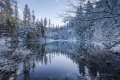 Winter am Mühlenteich 05