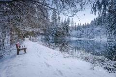 Winter am Mühlenteich 06