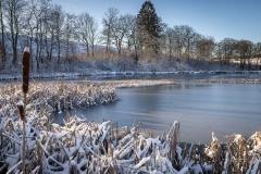 Winter am Mühlenteich 09