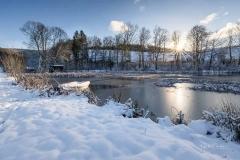 Winter am Mühlenteich 12
