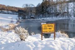 Winter am Mühlenteich 15