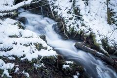 Winter am Mühlenteich 17