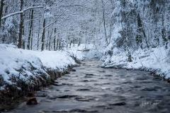 Winter am Mühlenteich 18
