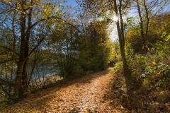 Hennesee-Herbst-002