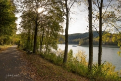 Hennesee-Herbst-012