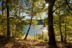 Hennesee-Herbst-032