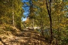 Hennesee-Herbst-035