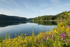 Morgens-am-Hennesee-09