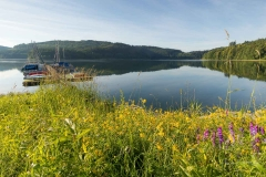 Morgens-am-Hennesee-11
