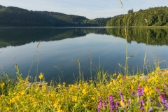 Morgens-am-Hennesee-12