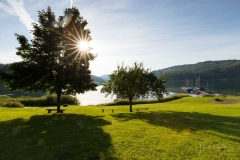 Morgens-am-Hennesee-13