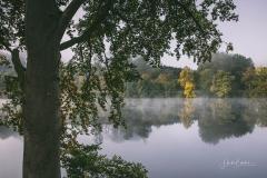 Nebelstimmung_Hennesee_17
