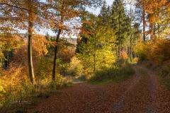 Herbst-Impressionen_050