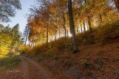 Herbst-Impressionen_051