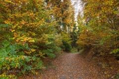 Herbst-Impressionen_052