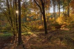 Herbst-Impressionen_053