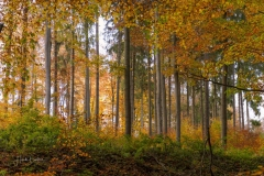 Herbst-Impressionen_056