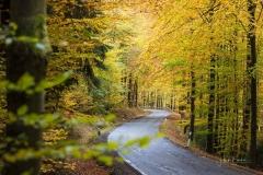 Herbst im Sauerland 01