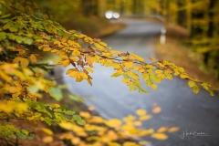 Herbst im Sauerland 02
