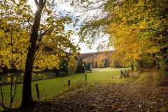 Herbst im Sauerland 14
