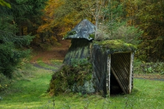 Schuetzhütte im Wald