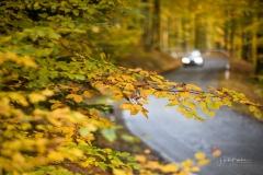 Herbst im Sauerland 03