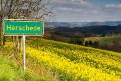 Herschede-33