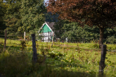 Hoheleye-Herbst-2021-02