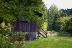 Hoheleye-Herbst-2021-07