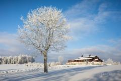 Hoheleye-im-Winter-1