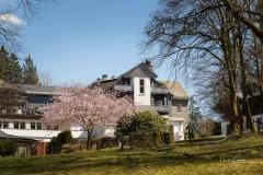 Jagdhaus-im-Fruehjahr-01