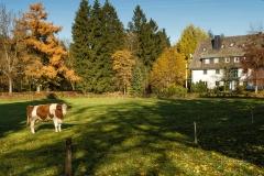 Jagdhaus-im-Herbst-16