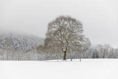 Jagdhaus-im-Winter-05