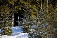 Kahler Asten-Steig Winter 1