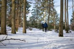 Kahler Asten-Steig Winter 6