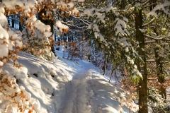 Kahler Asten-Steig Winter 3