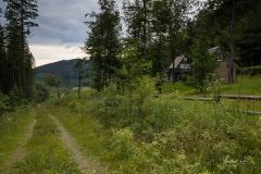 Kahler-Asten-Steig-Sommer-07