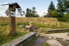 Kahler-Asten-im-Sommer-12