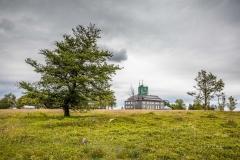 Kahler-Asten-im-Sommer-25