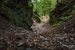 Alter Steinbruch am Kahlen Asten (Bärenschlucht)
