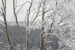 Kreuzberg-im-Winter-078