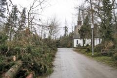 Am Tag nach Kyrill - 20.01.2007