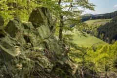 Lengenbecker-Alpen-04