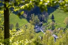 Lengenbecker-Alpen-Fruehjahr-2021-3