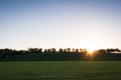 Baumreihe aus Blickrichtung Büenfeld