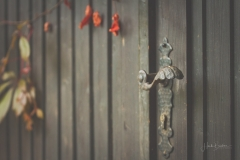 Tür & Herbstlaub