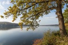 Möhnesee-Herbst-04