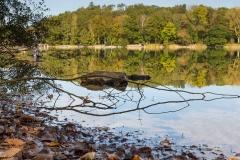 Möhnesee-Herbst-24