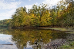 Möhnesee-Herbst-25